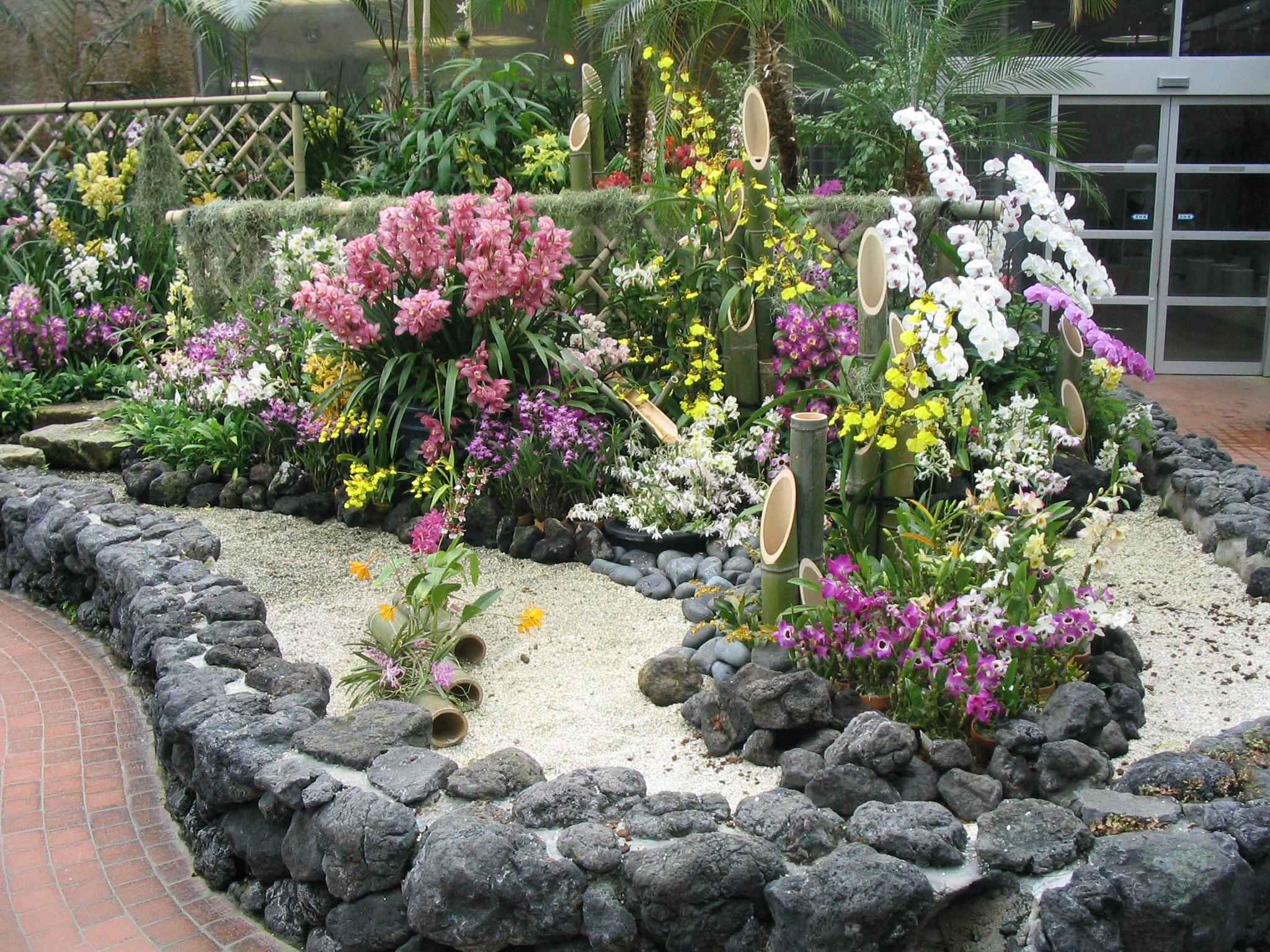Botanical_garden_kyoto_orchids